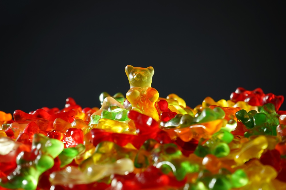 gold-bear-gummi-bears-bear-yellow-55825 (1).jpg